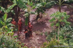 uncontacted-footage-thumb-01_article_large.jpg